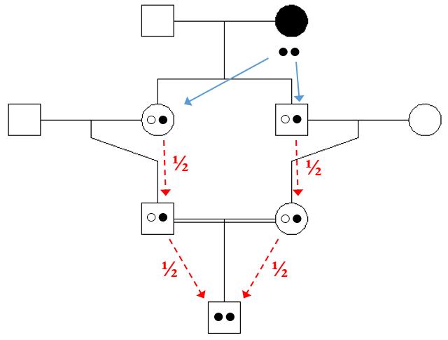 figur 3
