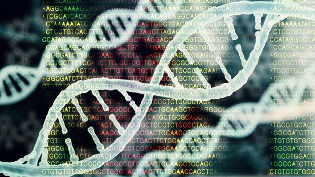 genetikk.JPG