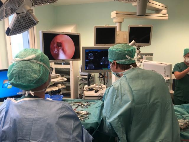 operasjon siste